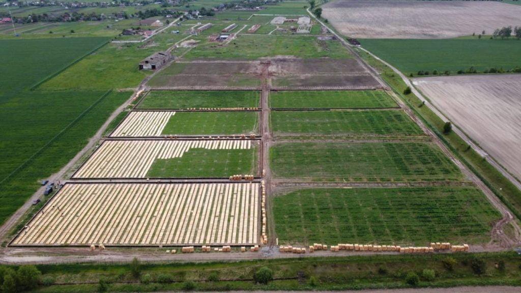 Ферма равликів у Макарівській громаді